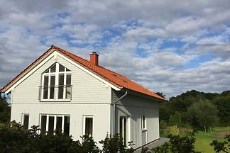 Marina Hülsen - Rapsblütenhaus
