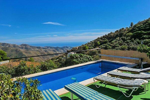 Der herrliche Pool liegt direkt vor dem Haus