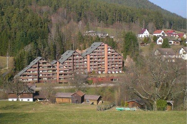 FeWo Haus Schwarzwaldgrund in Baiersbronn - immagine 1
