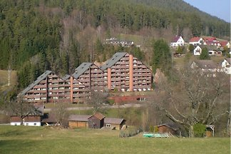 Vacation rentals Black Forest grounds