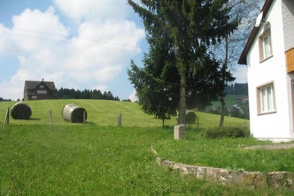 Ferienhaus Lahr à Waldstatt - Image 1