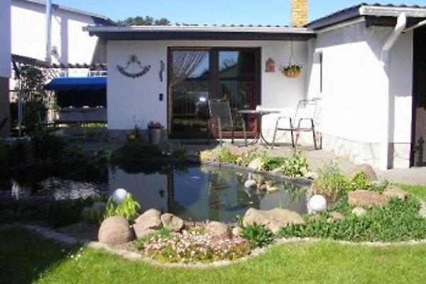 Ferienhaus mit 2er Paddelboot in Mirow - Bild 1