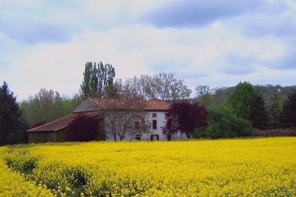 Moulin den Bas en la Bastide de Lordat - imágen 1