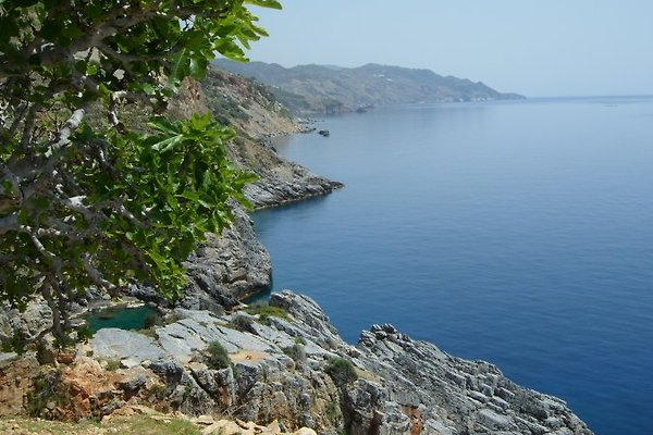 Ocean Paradise en Gazipasa - imágen 1