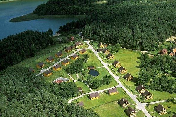 Luftbild auf den Teil am See