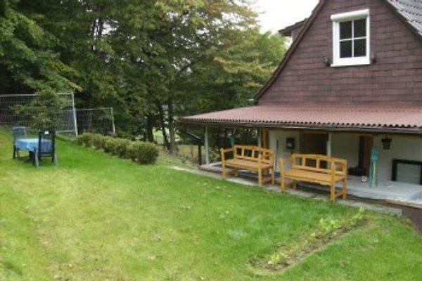 Ferienhaus mit Waldrandblick