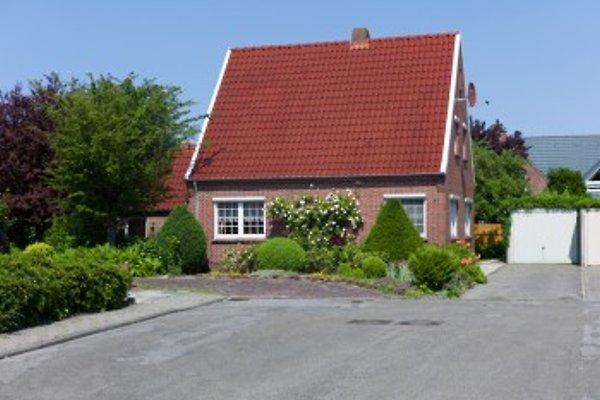 Ferienhaus Seehase mit Sauna in Norddeich - immagine 1