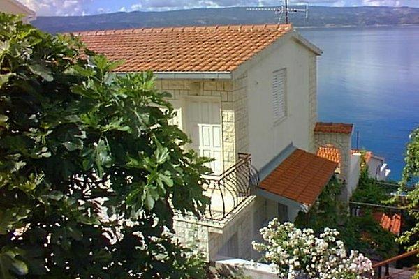 Villa Ana à Stanici à Omiš - Image 1