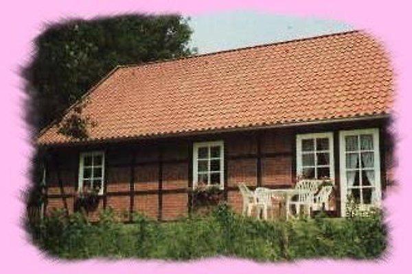 Romantische Ferienhäuser en Thomasburg -  1