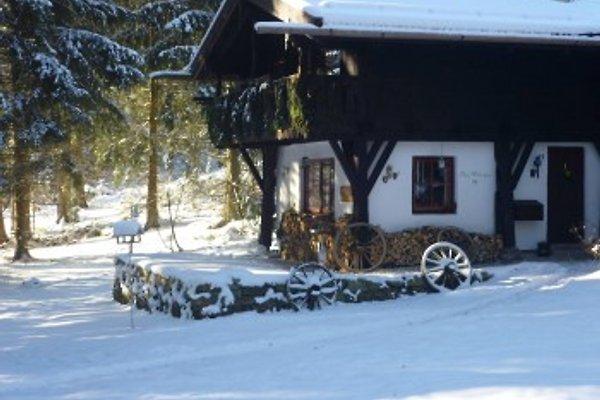 4**** Dürrw. Haus Wildschütz à Bischofsmais - Image 1