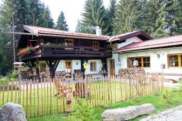 Großzügiger Forsthof