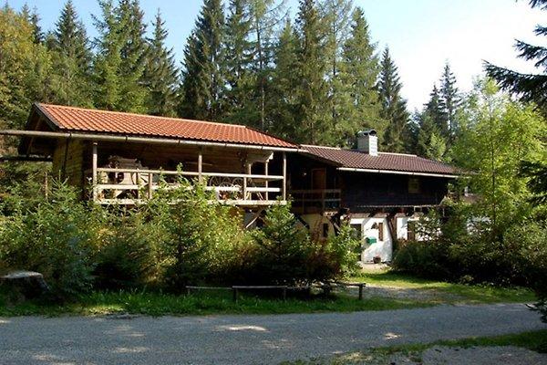 Dürrwieser Haus Siebenstern in Bischofsmais - immagine 1