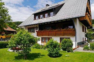 Appartement Vacances avec la famille Breitnau