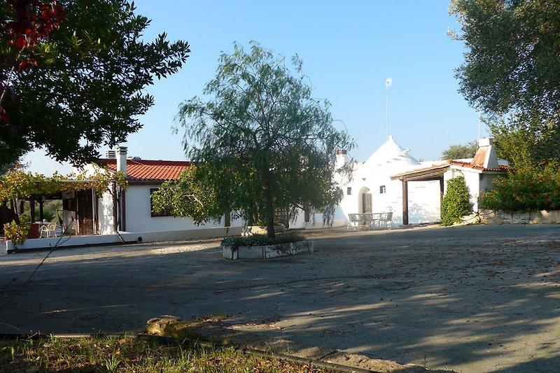 Villa Oliveto  à Serranova - Image 2