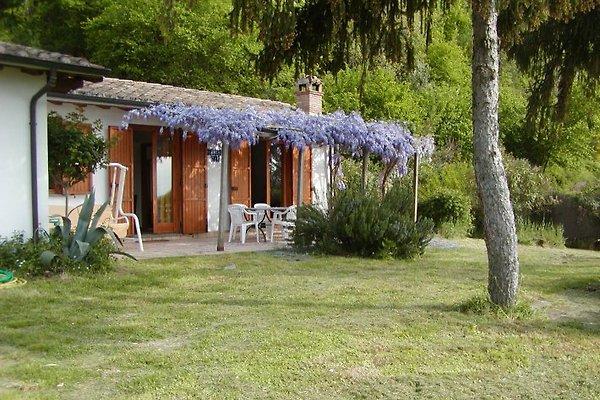 casa de vacaciones Miralago en Bolsenasee - imágen 1