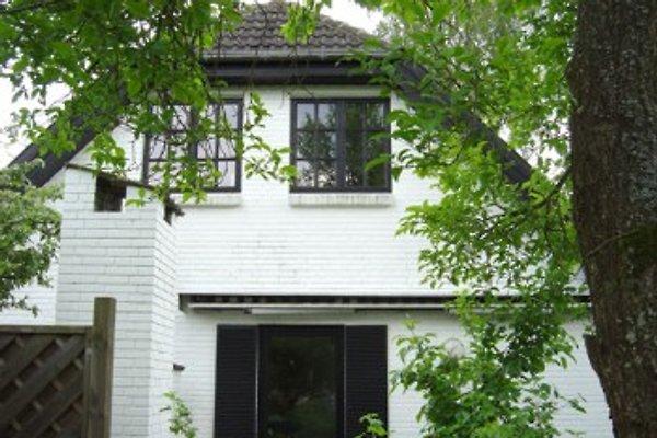Ferienhaus Alstertal in Hamburg-Mitte - Bild 1