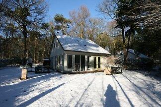 Haus im Wald und am See