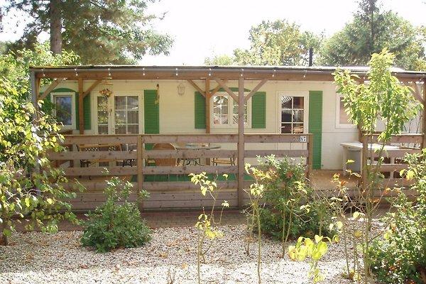Luxe maison mobile  à Sevenum - Image 1