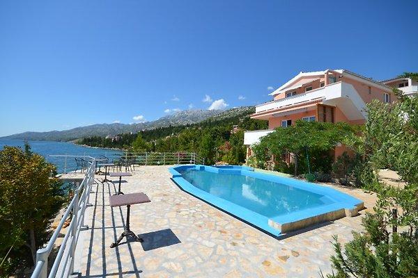 Paradise Adriatique à Starigrad Paklenica - Image 1