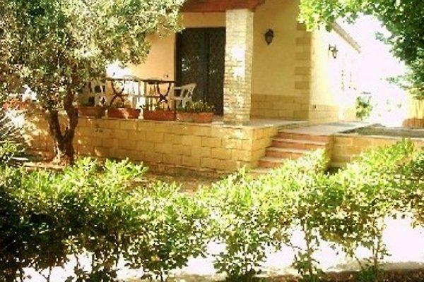 Terrasse am Haus