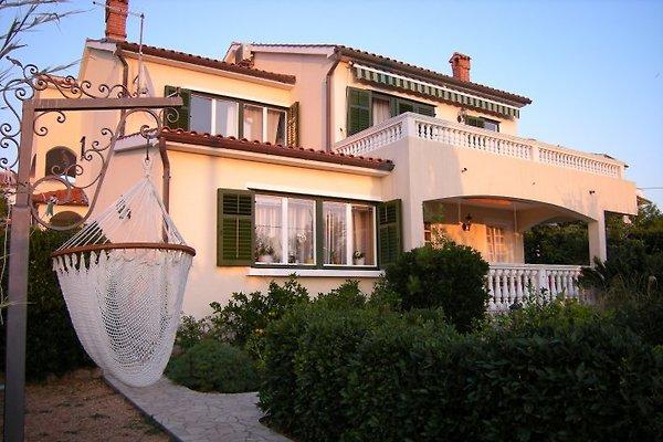 Apartments KAPELICA *** Rab  in Barbat - picture 1