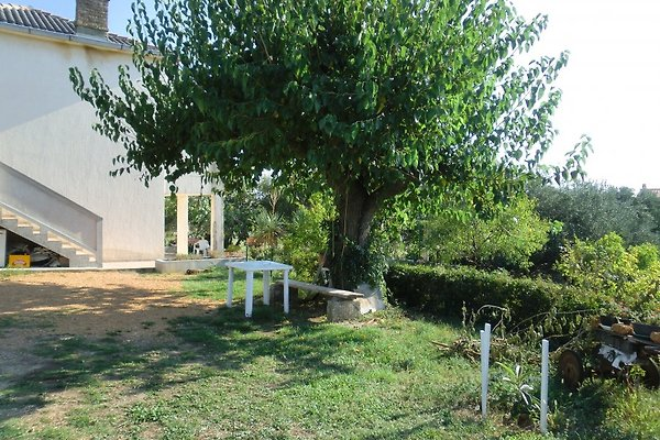 Apartamento / 6 en el jardín de oliva, el aire en Banjol - imágen 1