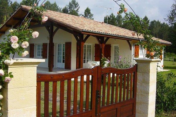 Villa Edelweiss en Vielle-Saint-Girons - imágen 1