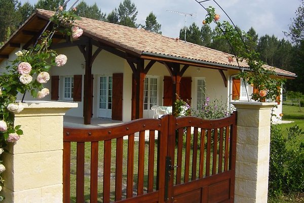 Villa Edelweiss in Vielle-Saint-Girons - Bild 1