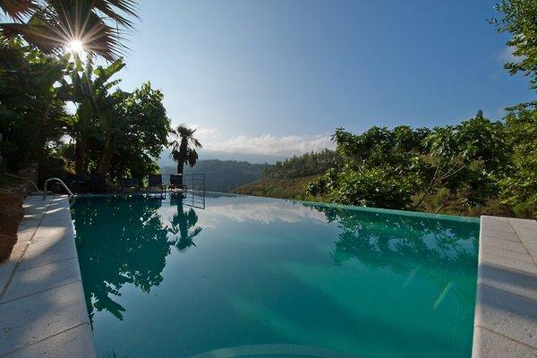 Quinta dos Moinhos in Vila Nune - immagine 1