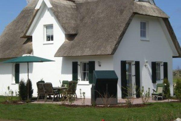Ferienhaus Inselrose en Glowe -  1
