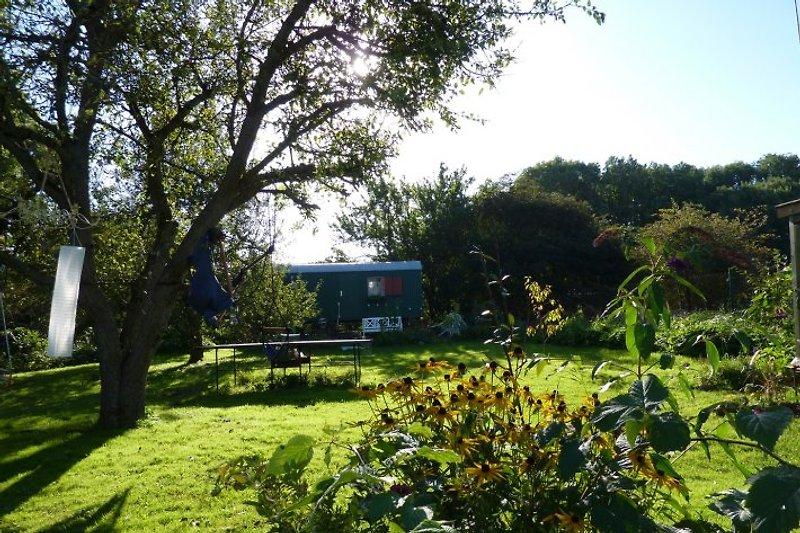Gartenidyll mit Tischtennisplatte & Bauwagen