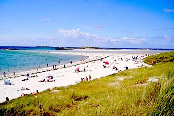 le plage et les dunes à proximité de la maison