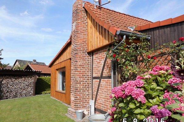 Ferienhaus Aderhold à Winsen/Aller - Image 1