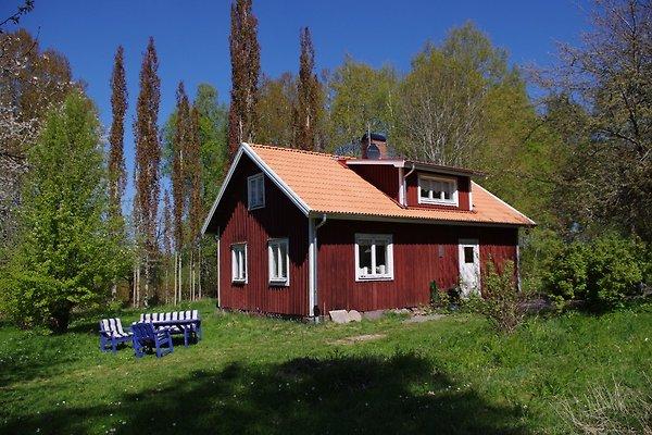 Solfagra  in Undenäs - immagine 1