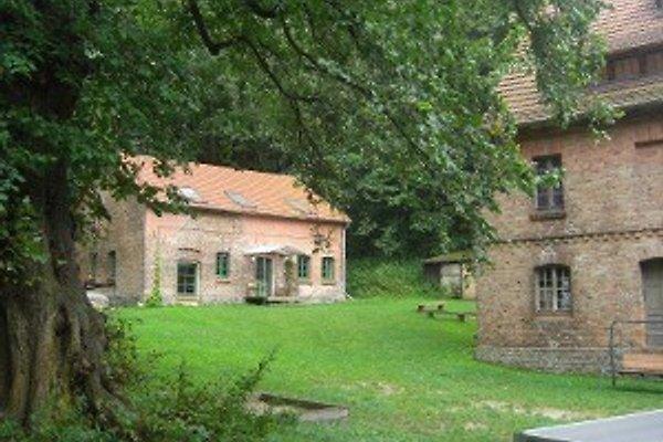 Wassermühle Hohenfinow in Hohenfinow - immagine 1