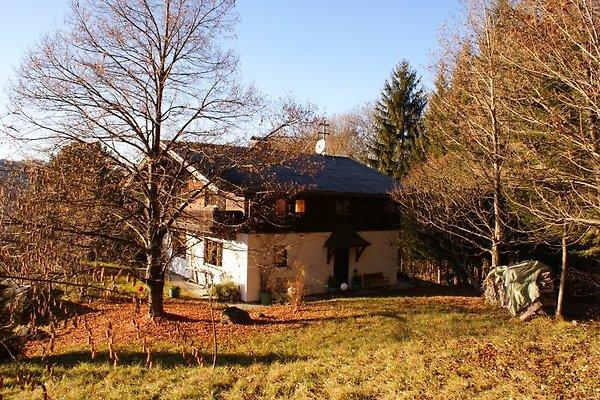 Cottages Riess  à Oberhofen am Irrsee - Image 1