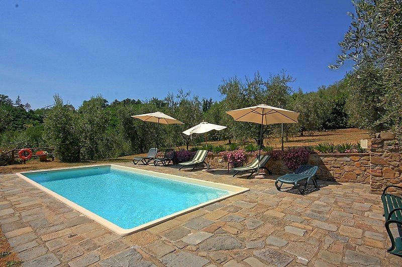 Pool Casa La Zizzola