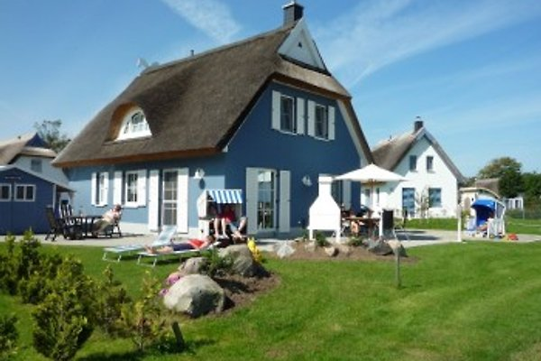 Holiday home Albatros I to 8 P. in Mursewiek - picture 1