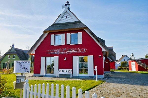 Ferienhaus Albatros II***** auf Rügen