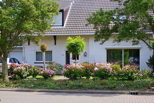 JW  Schuurmanstraat 116  à Domburg - Image 1