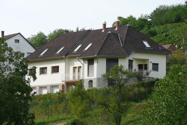 Villa Mecsek in Mecseknadasd - Bild 1