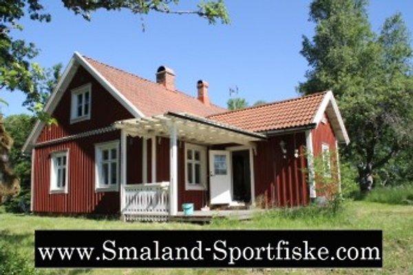 JA1 Ferienhaus Törnamĺla See en Tingsryd - imágen 1