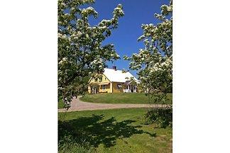 LR1 Tolles Haus am Ĺsnen Smĺland