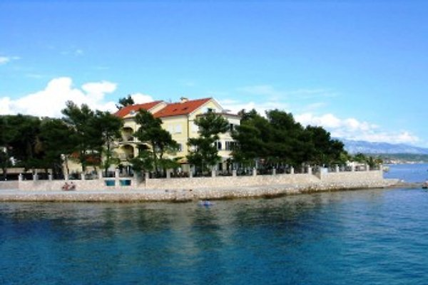 Apartments Villa Petrac in Rab (town) - picture 1