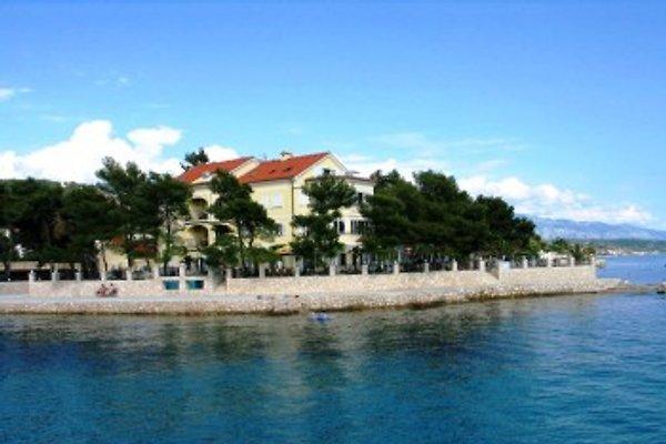 Apartments Villa Petrac à Rab (ville) - Image 1