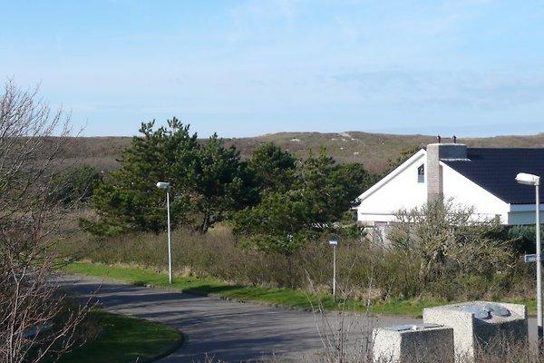 Ferienhaus in Julianadorp aan Zee - Bild 1