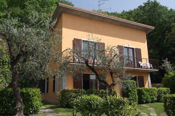 Villa Girasole am See in Torri del Benaco - immagine 1