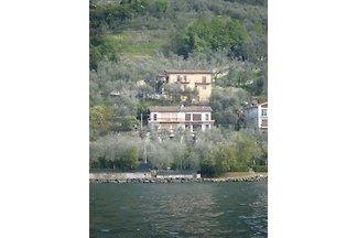 Villa Olivo zona tranquila