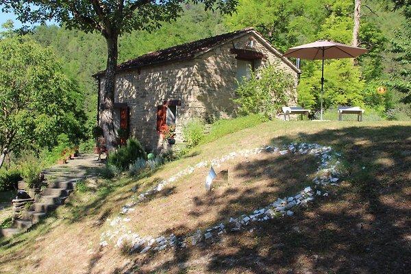 La Casetta - Porcaticcio in Casola Valsenio - immagine 1