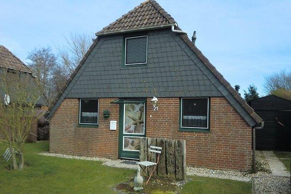 Maison Stardate à Herkingen - Image 1